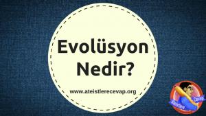 evolüsyon nedir
